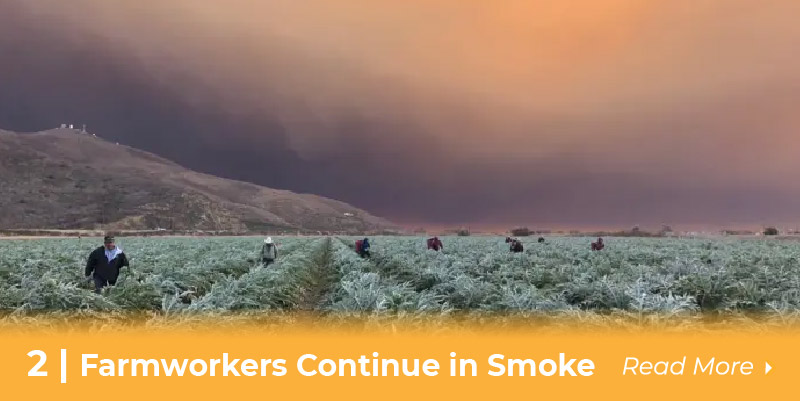farmworkers continue in smoke