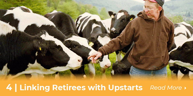 4 retirees and upstarts