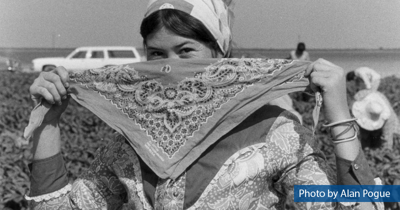 A farmworker ties a bandana around her face