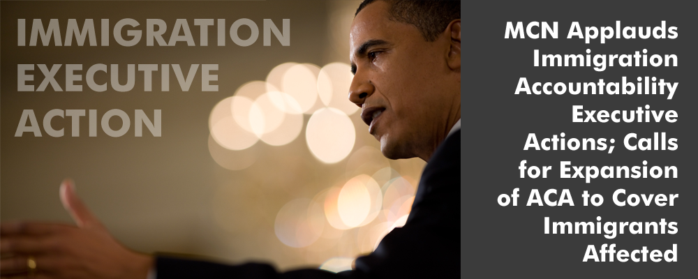 Immigration Accountability Executive Action