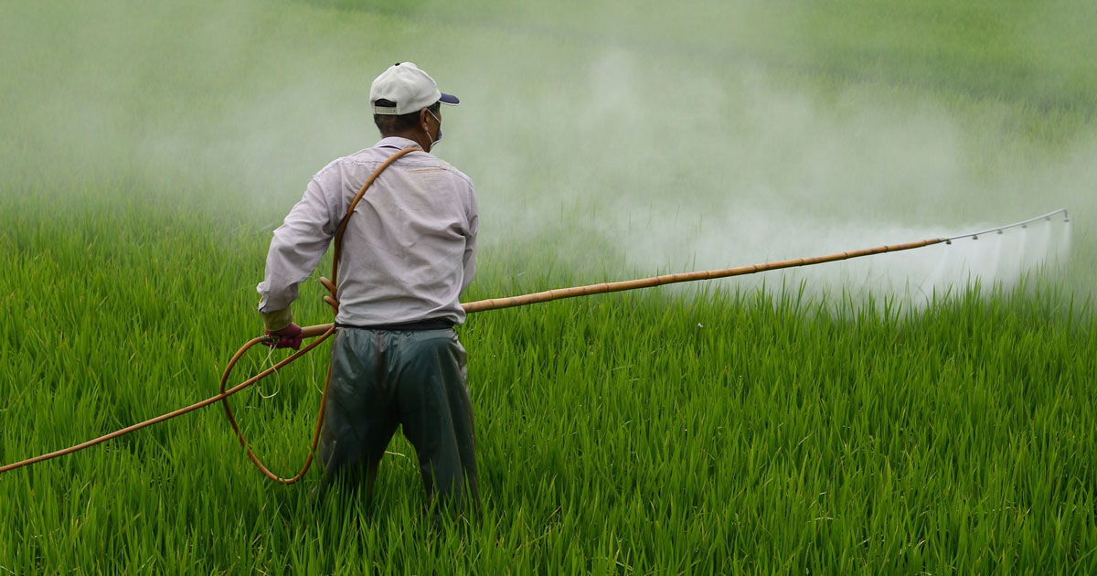farm worker applying pesticides to field