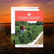 Tomato Worker's Health and Safety Guide