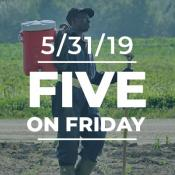 Five on Friday: National Heat Awareness Day