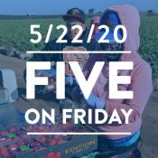 Five on Friday: Undocumented but Essential