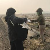 Essential: Protecting Farmworkers from Wildfire Smoke in California