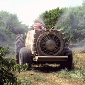 Long Path to Nationwide Ban: Chlorpyrifos and Farmworker Health
