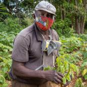 Farmworkers & COVID-19: Partnerships to Protect Workers Highlighted in American