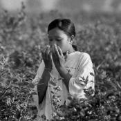 Pesticide poisoning in Monterey