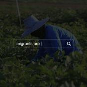 Farm worker in field with search box and text: migrants are