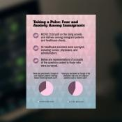 infographic with pie charts