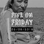 MCN Five on Friday - Maria Moreno in Field