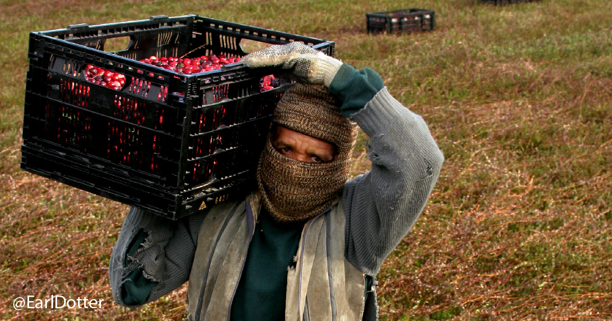 Farmworker has face covered for pesticide