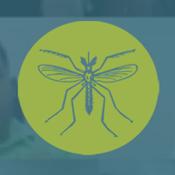 MCN Zika Echo Project