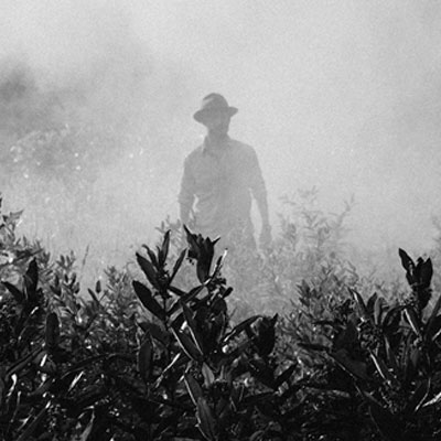 man standing in field of smoke