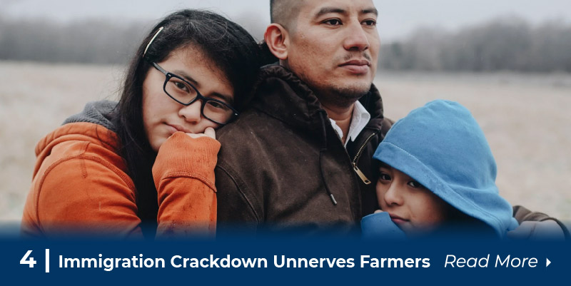 4 immigration crackdown unnerves farmers