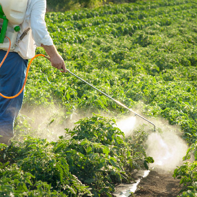 Farmworker sprays pesticide on field
