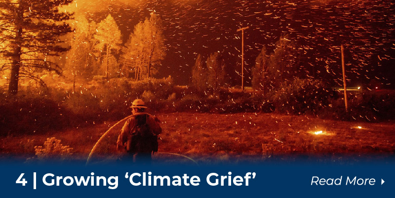 Climate Grief