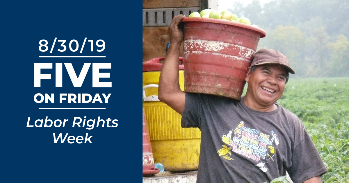 A smiling farmworker with bucket of tomatoes