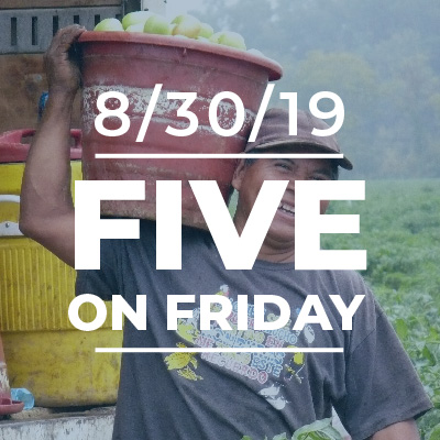 Five on Friday August 30, 2019
