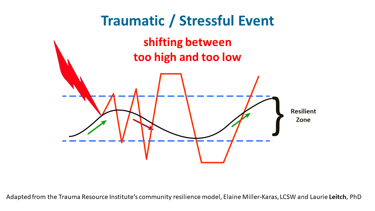 Resilience Zone graphic