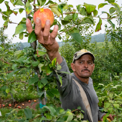 Partnering Through the Pandemic: Keystone Health Agricultural Worker Program's F
