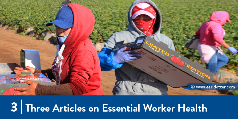 Farmworkers wear bandanas while working