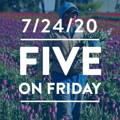 Five on Friday: The Hidden Toll of COVID-19