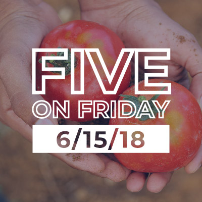 Five on Friday hands holding tomatoes