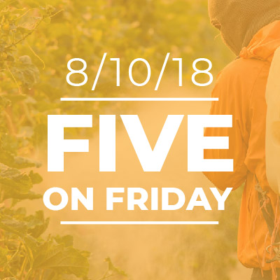 Five on Friday: Man spraying pesticide