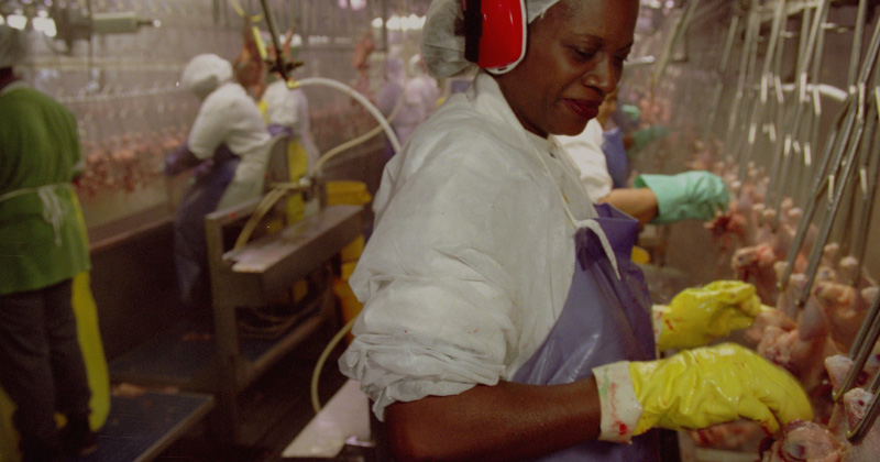 A worker on a processing line at a poultry plant