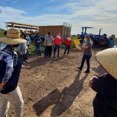 Declaración de posición de MCN: las pruebas a los trabajadores agrícolas ayuda