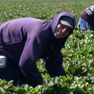 Woman works in farm field