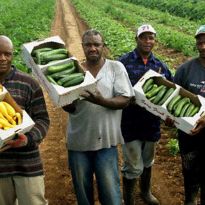 farmworkers pose with harvested produce