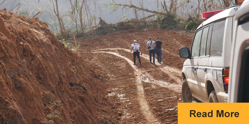 people walking on dirt road with fallen trees