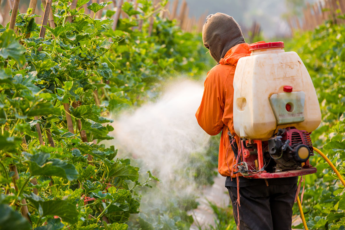 Agricultural worker spraying pesticides