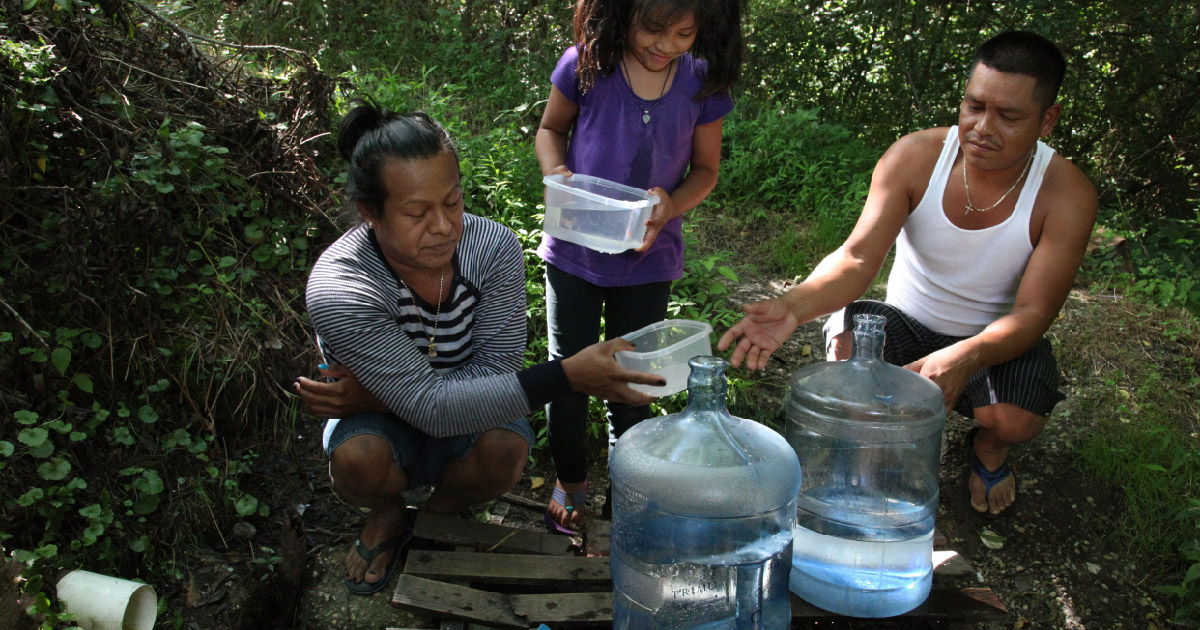 Family gathers water in forest