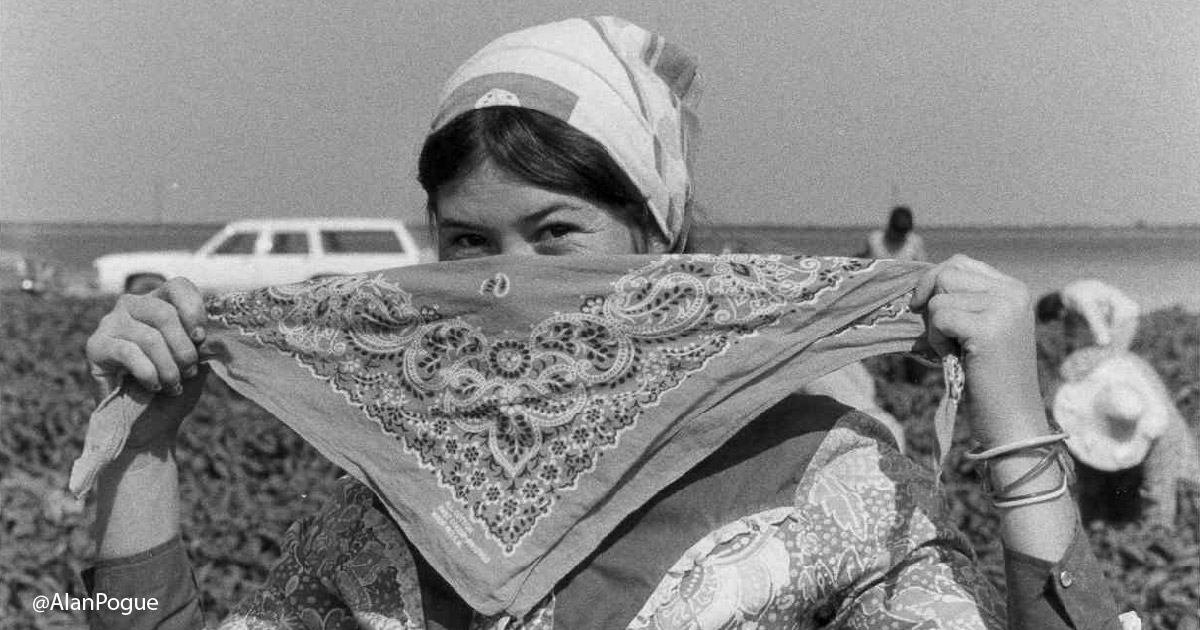 Woman farmworker putting on scarf
